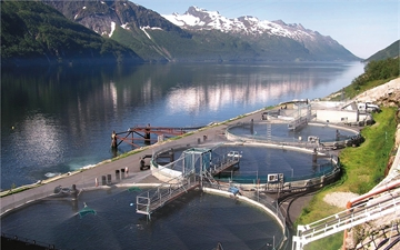 Aquaculture basin for industrial fishfarming.